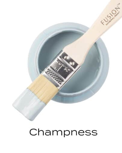 T1CHAMPNESS